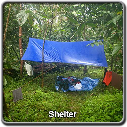 course-topics-shelter